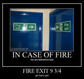 Exit 9 3/4…