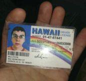 Legit ID…