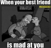 When your best friend is upset…