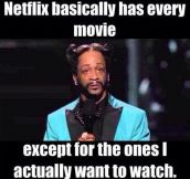 How Netflix works…