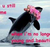 Lana Del Whale…