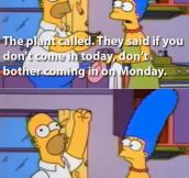 Homer, the plant called…