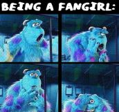 What being a fangirl looks like…