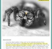 Something you didn't know about spiders…
