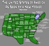 The USA as seen by a New Yorker…