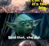 Getting tired of your crap, Yoda…