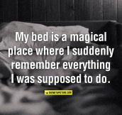 My bed is a magical place…