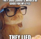Betrayed bunny…