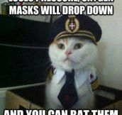Captain Kitty…