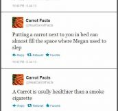 Carrot Facts…