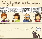 Why I prefer cats…