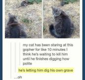 Digging his own grave…