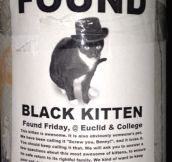 Black kitten found…