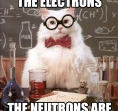 Chemistry cat brings the bill…