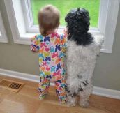 Baby and dog…