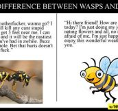 The difference between wasps and bees…