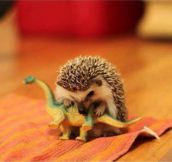 Reenactment of how the dinosaurs became extinct…