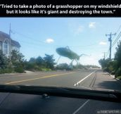 There's a grasshopper destroying my town…