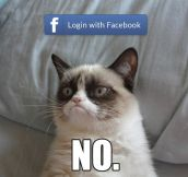 Whenever I'm asked to login with Facebook…