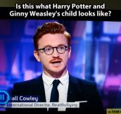 Harry Potter's illegitimate son…