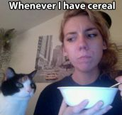 Every cat ever…