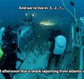 And now for the underwater report…