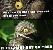 Inappropriate joke Potoo…