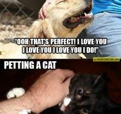 Petting a dog vs. petting a cat…