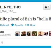 The plural of fish…