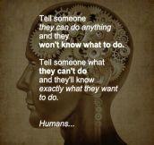 Human nature is strange…