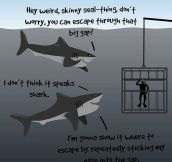 Sharks are nice guys…