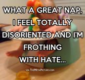 What a great nap…