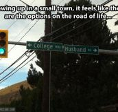 Options on the road of life…