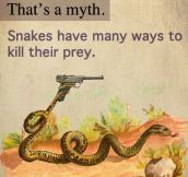 Something you probably didn't know about snakes…