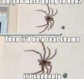 Every spider ever…