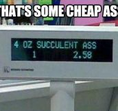 That's cheap…