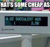 That's cheap…