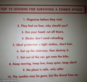 Top 10 lessons to survive a zombie attack…