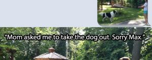 Take out the dog…