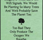 If trees gave off Wi-Fi…