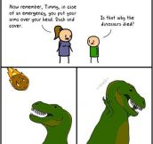 Why the dinosaurs died…