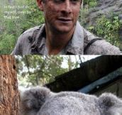 BEAR GRYLLS GOES TO AUSTRALIA