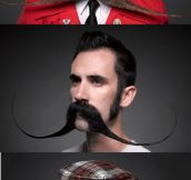 From the 4th Annual National Beard & Mustache Championship!
