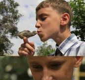 I want a bird for a best friend
