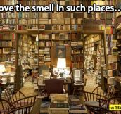 Best smell in the world…
