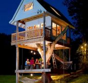 Amazing tree house for grown-ups…