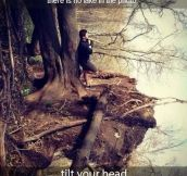 You see a lake? Better look twice…