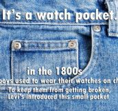 The watch pocket…
