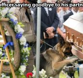 Saying goodbye to his partner…