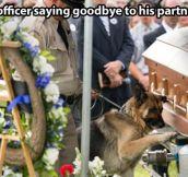 Saying goodbye to his partner…